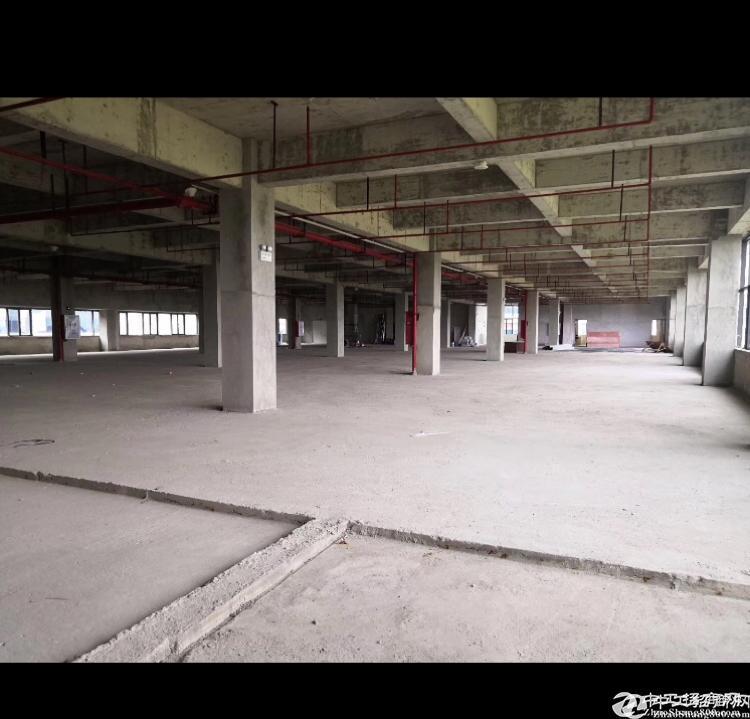 龙岗平湖街道主干道边成熟工业区内独门独院5700平方出租