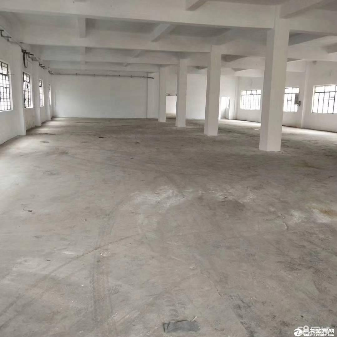 坪山坑梓大型工业区楼上3100单层标准厂房出租