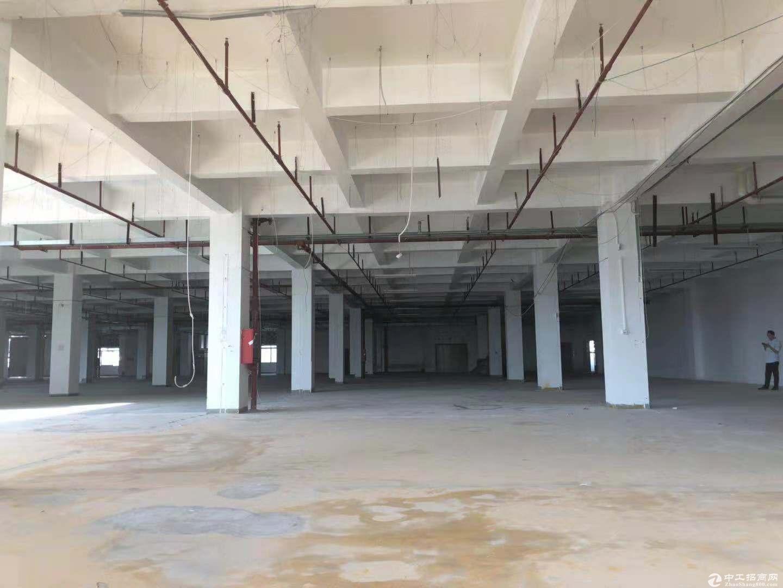 坪山新出原房东1500平米厂房出租,有红本 带装修
