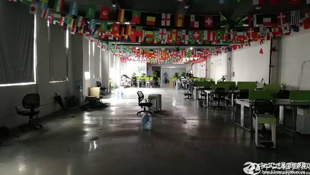 坂田杨美地铁站100米1700平方精装修电商办公