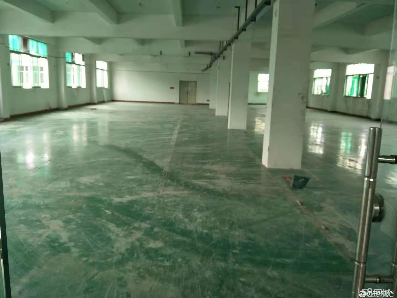平湖华南城附近新木原房东厂房三楼整层900,超大空地