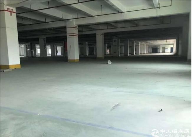 布吉地铁站红本独院独栋厂房4万平招租