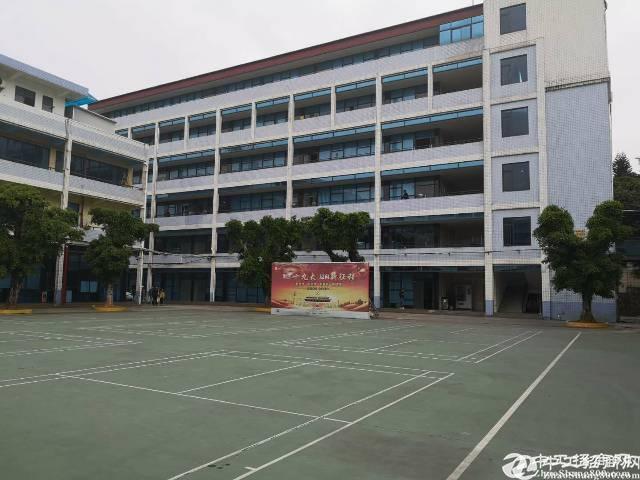 广州天河区奥林匹克旁学校出租
