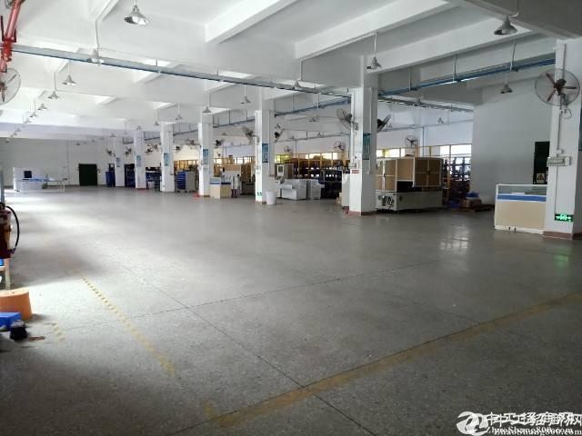 龙岗原房东红本独院厂房一楼1500平实际面积出租