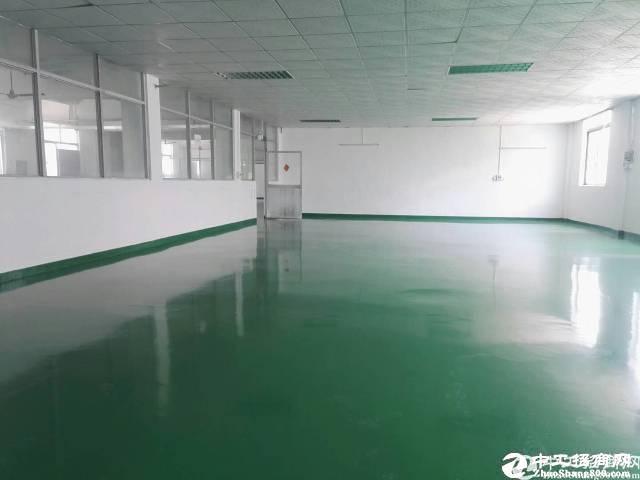 坪山六联新出楼上带装修实际面积1200平米厂房出租