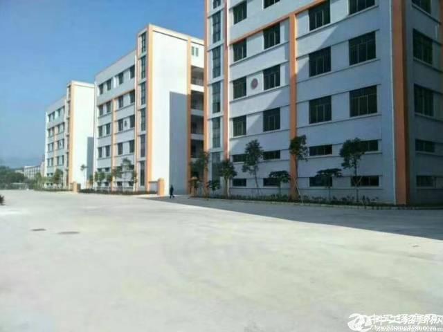 惠州政府招商项目总面积30万平工业园可分租有补贴