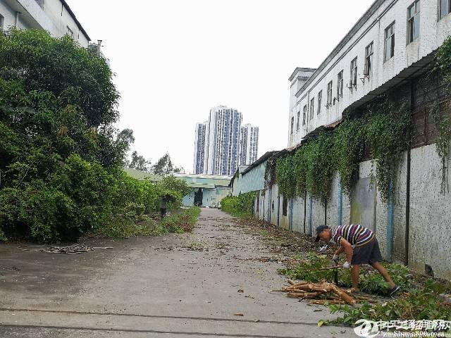 深圳坪山历史遗留钢结构厂房3000平米出售
