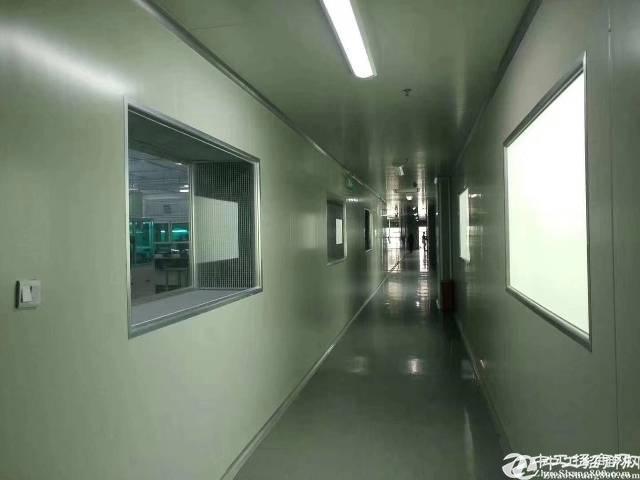 东莞松山湖带红本厂房出售1000平起售