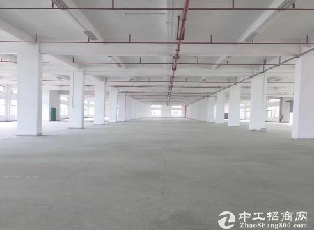 布吉李朗厂房4500平米,可分租