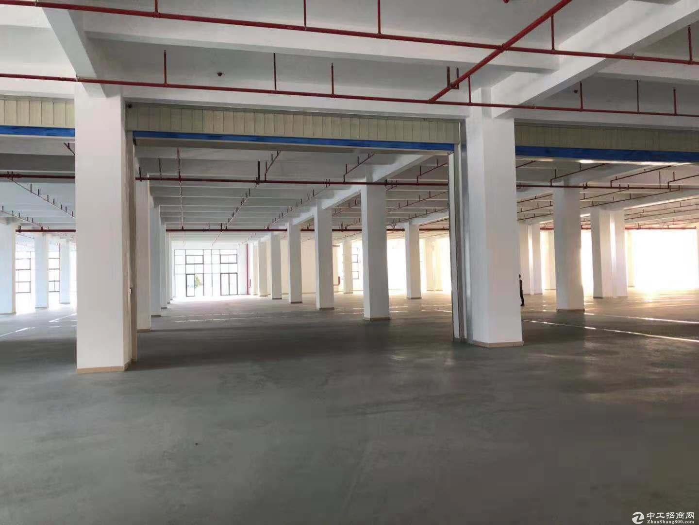 坪山坑梓独院2350平有电梯现成办公室装修