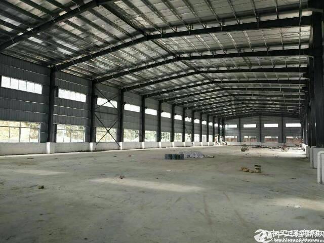 坪山 坑梓新出钢构厂房滴水15米,5000平方出租