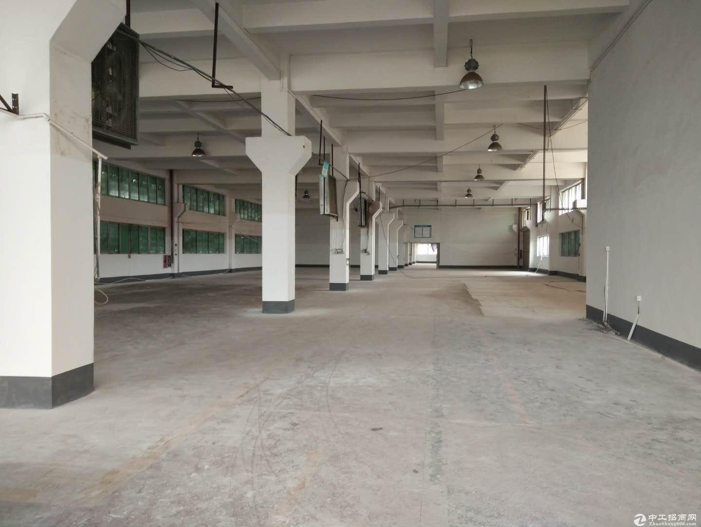 沙田镇独院厂房1200,现成装修办公室,可办环评无公摊