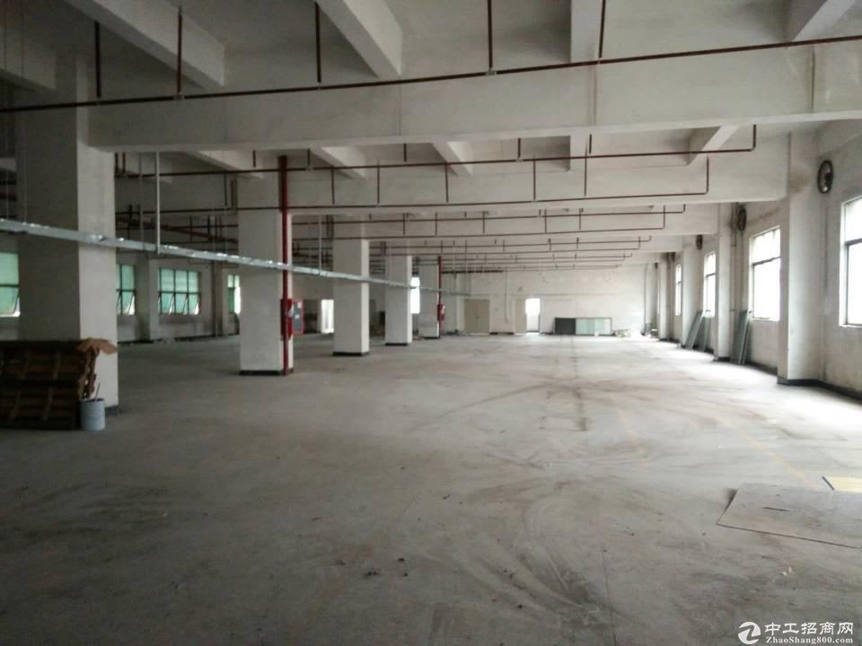 沙田镇新出成熟工业区分租单一层一栋2000平方,空地大