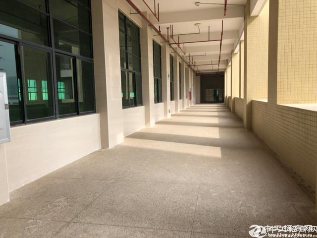 广州黄埔萝岗开发区全新原房东独院35000平厂房出租