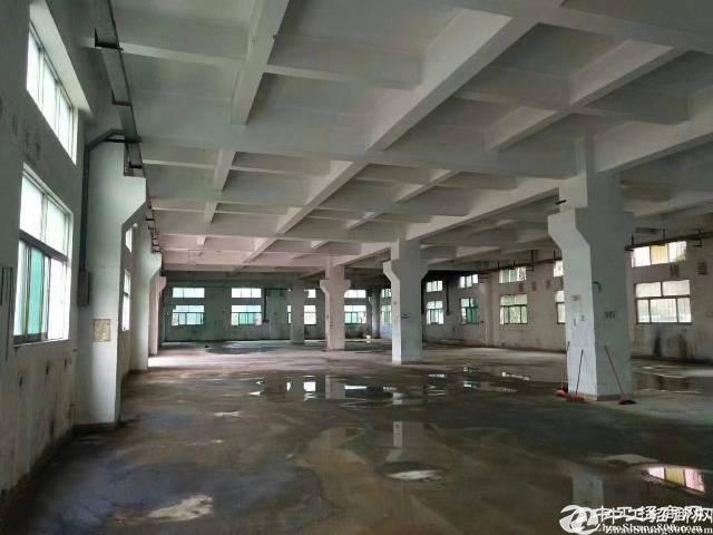 龙岗单一层17米标准一楼59000平方