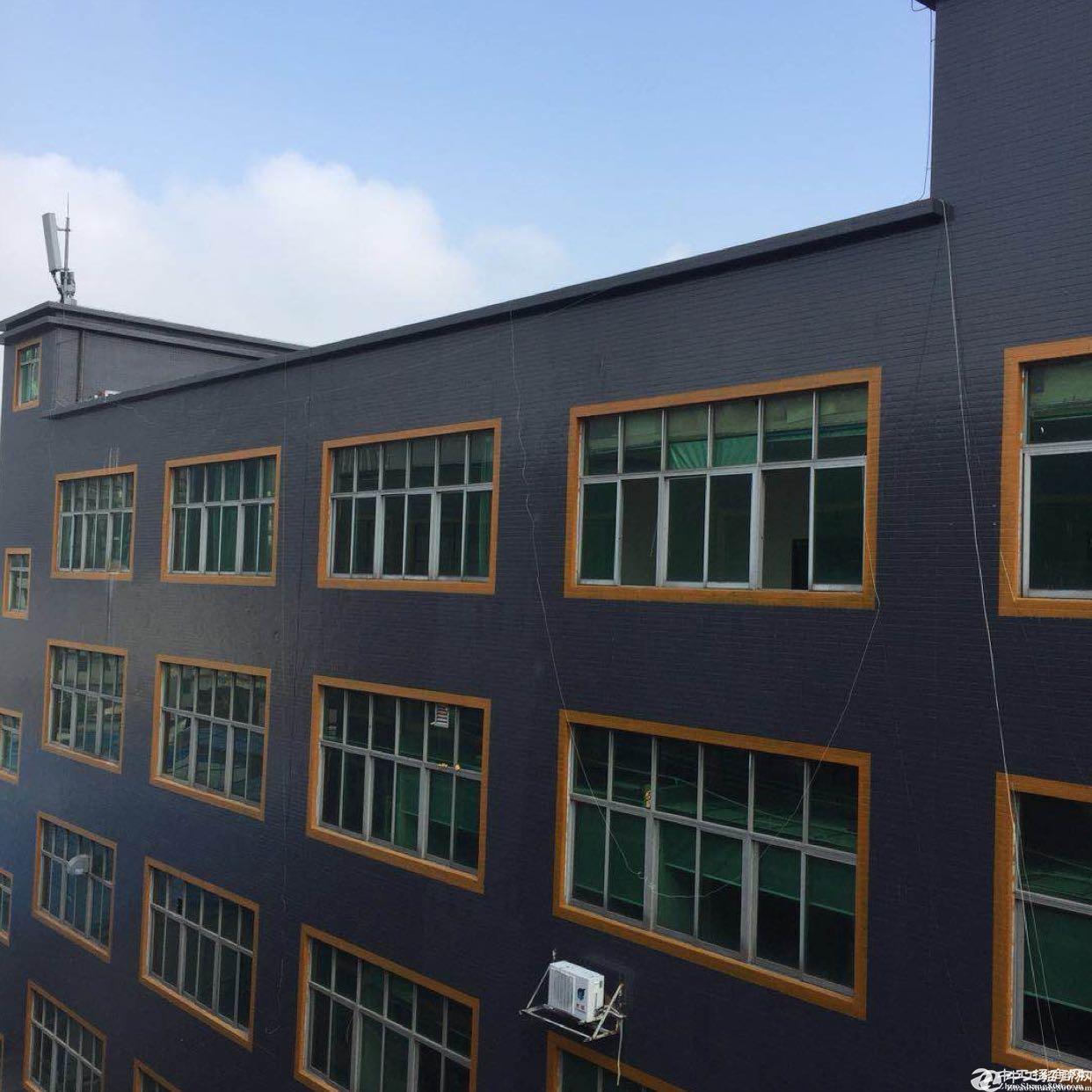 坂田 天安云谷附近新出160-1600平方厂房出租 面积大小可分