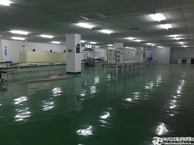 平湖现成装修厂房2500平方带无尘车间
