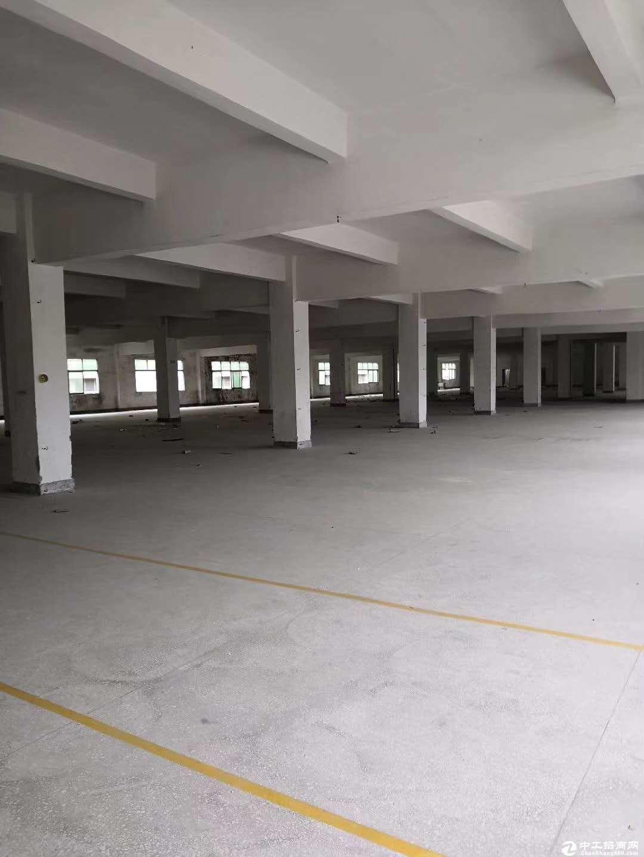 碧岭红本原房东厂房整层1200平方出租
