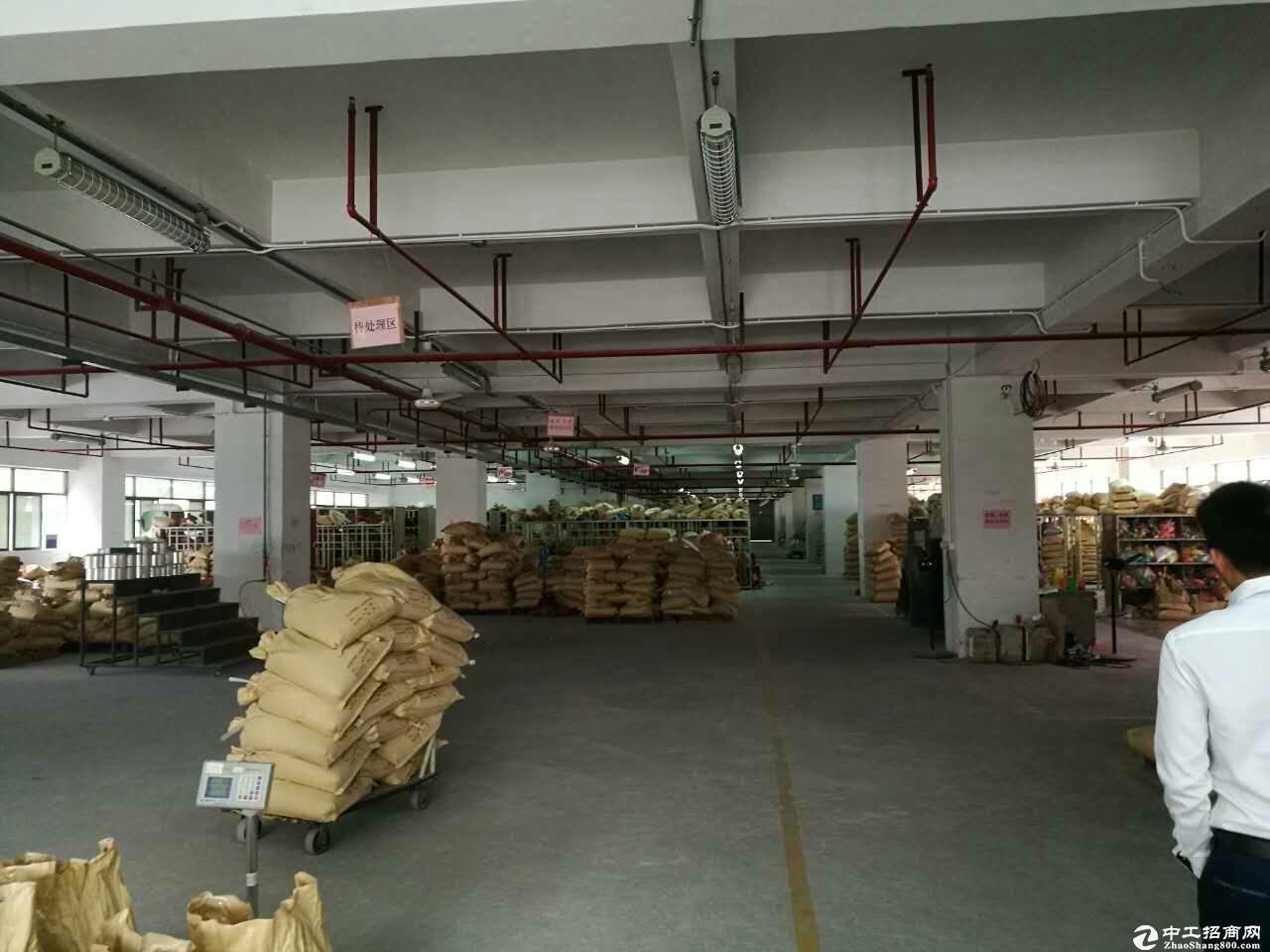 坪地中心村空出两独栋厂房1-3层出租,有红本,易招工