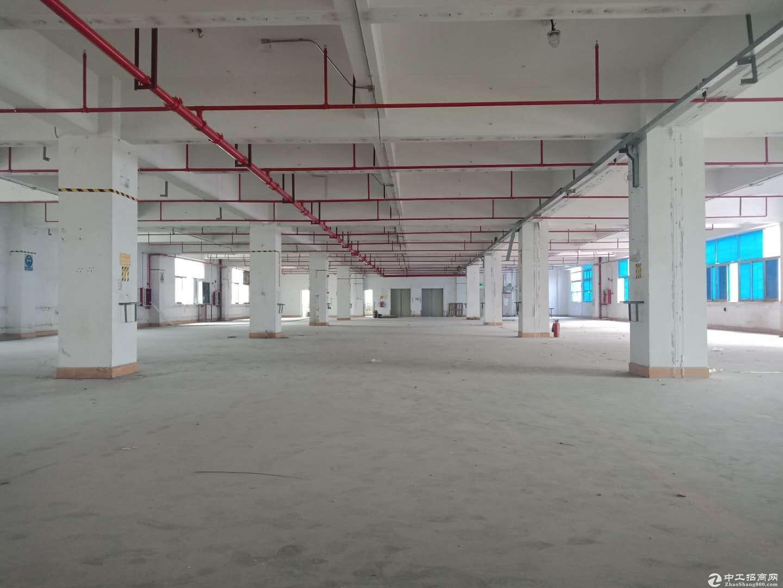 业主直租!布吉秀峰工业区整栋红本厂房8000平