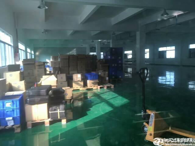 华南城附近新出楼上原房东厂房1500平方招租
