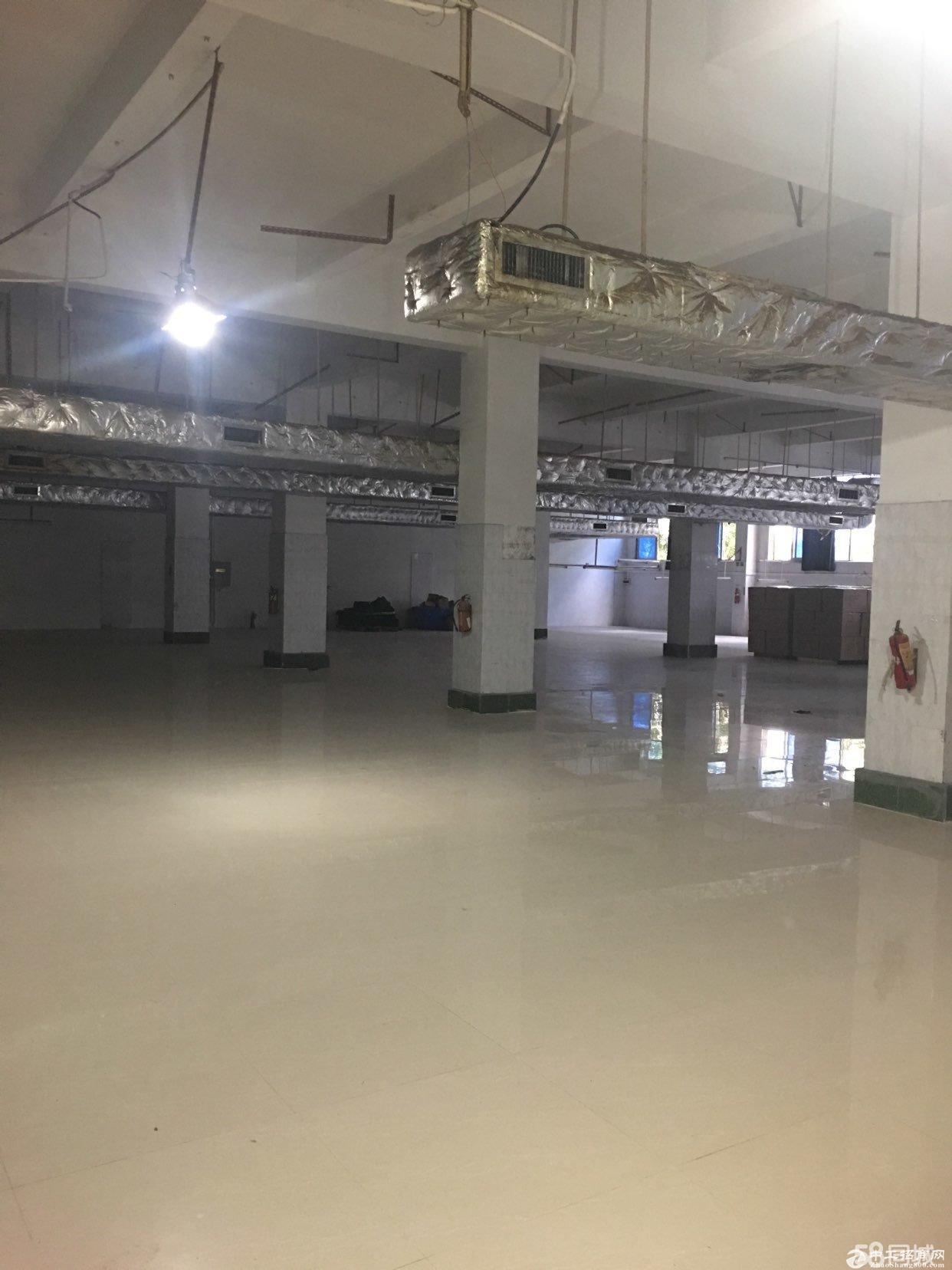 平湖军事管理区附近一楼1400平厂房急租-图4