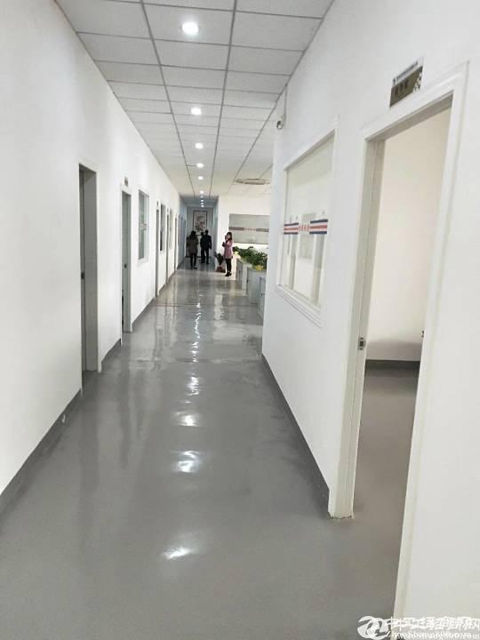 平湖华南城2500平方精装修办公带无尘车间厂房出租。