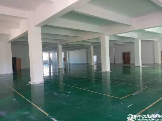 坂田天安云谷附近原房东600平方精装修厂房出租,8成使用率