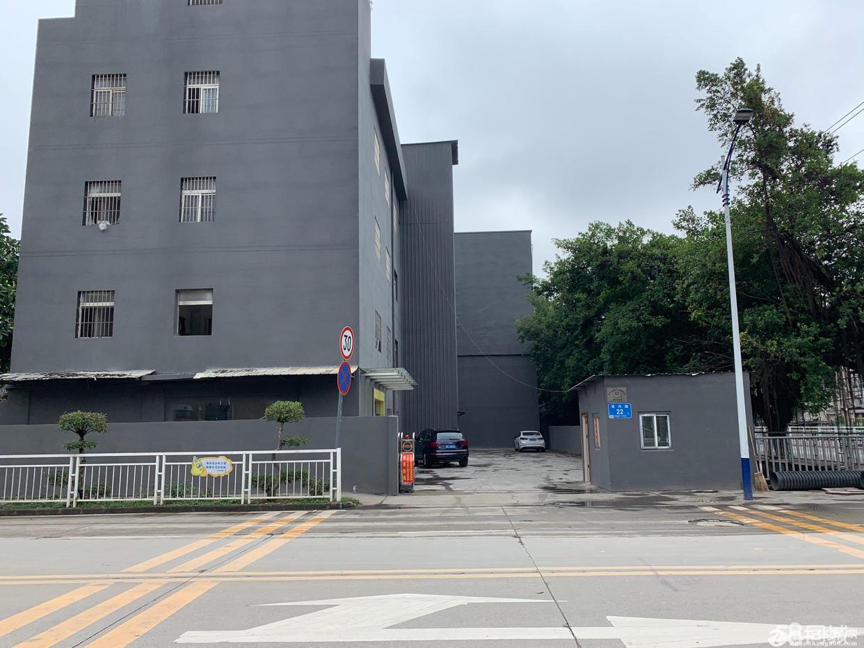 丹竹头独门独院单一层700平米出租可分租