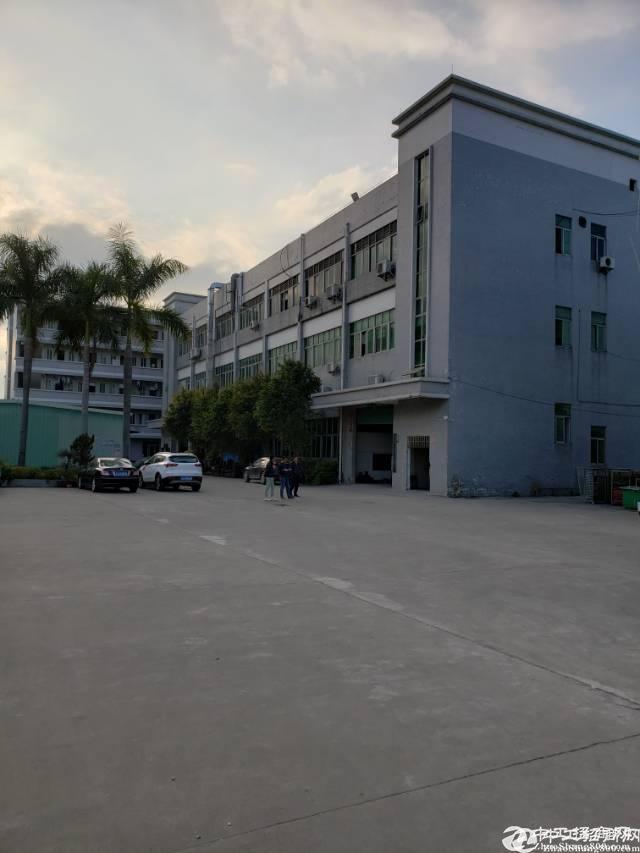 双证国有厂房出售 东莞塘厦占地10000建筑17500平方红本