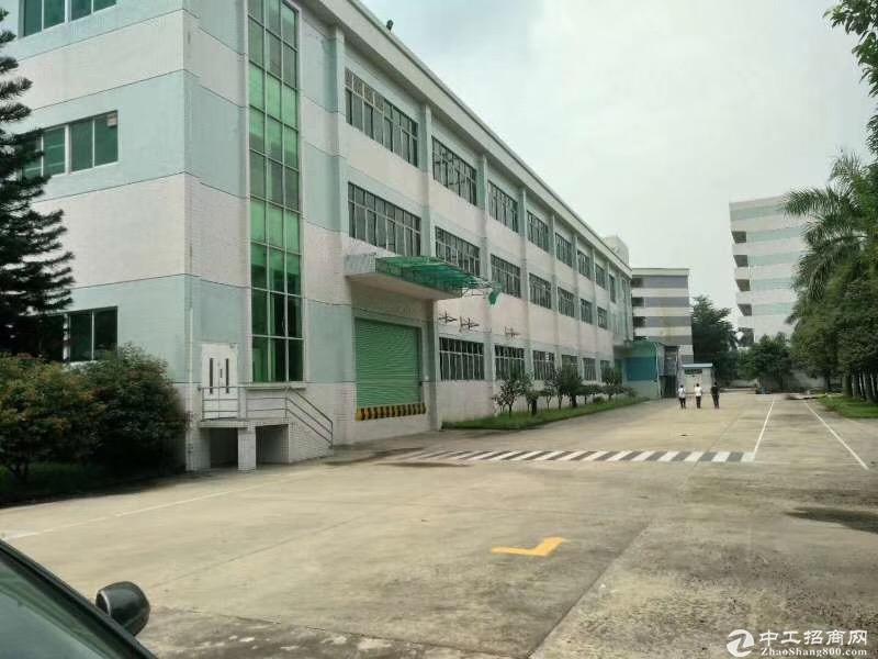 三旧改造范围内,红本厂房出售,建面8567平方