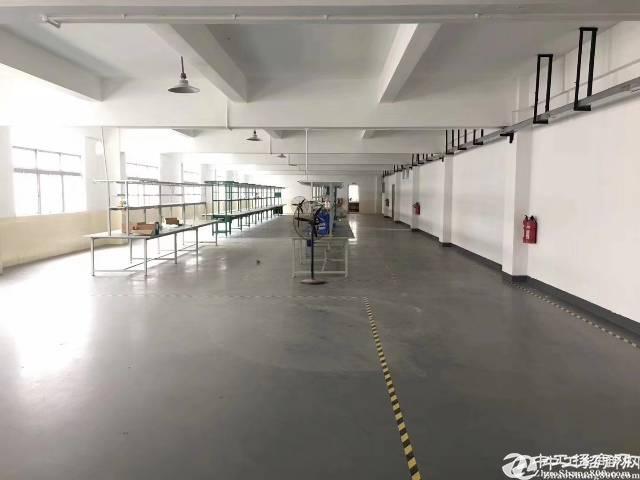 横岗大康1400平方原房东厂房低价出租