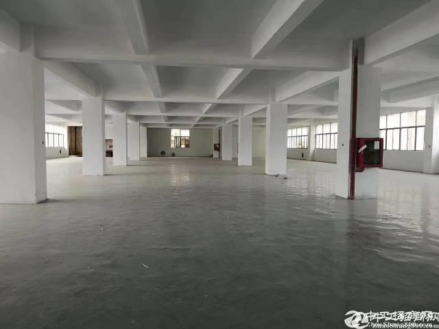 横岗228工业区320平带装修厂房出租