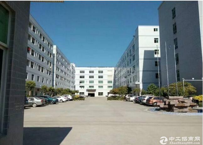 石井南坪三期出口整层950平方 带精装修厂房出租