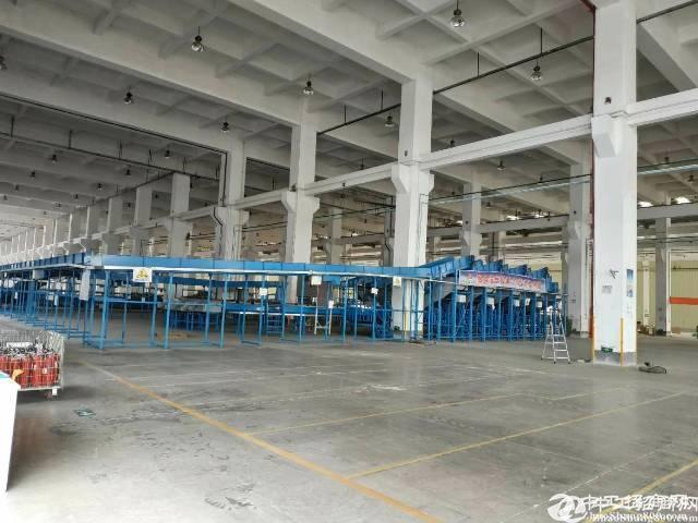 深圳第一高重工业钢构厂房37000万平出租滴