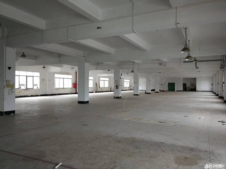 布吉大芬地铁附近布澜路旁上新出一楼2500平米厂房出租