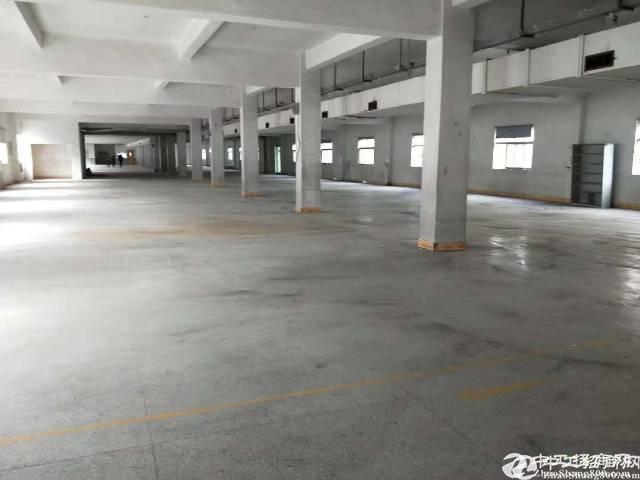 横坪公路新出一楼580平出租层高5.5米 可办租赁合同