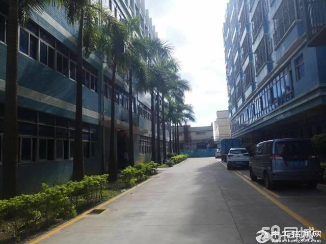 坑梓莹展科技园2楼500平米带精装修厂房出租