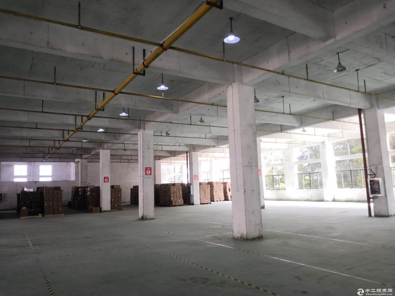 黄陂五湖地铁口2000平米厂房,适合生产,加工,仓储-图2