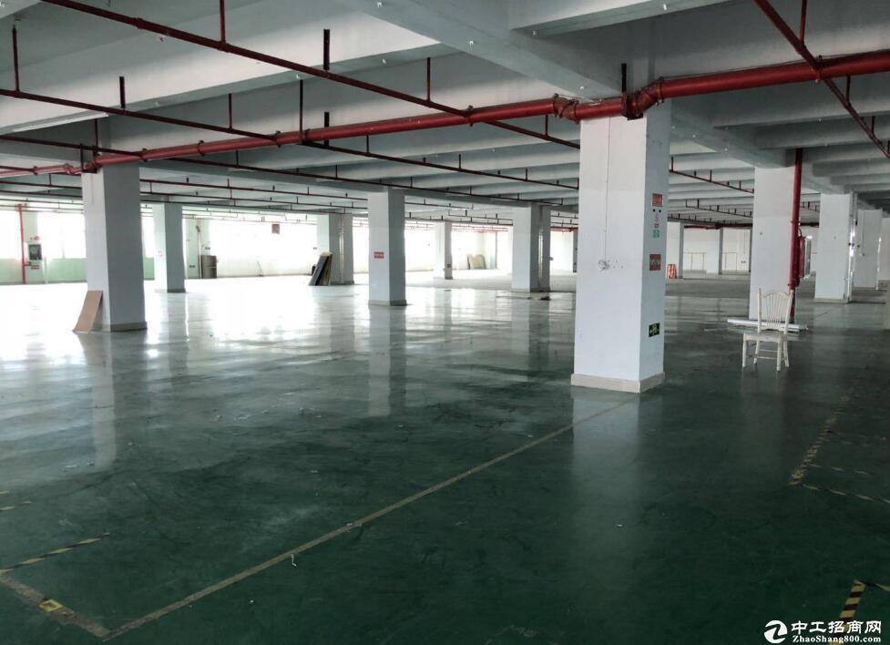 黄陂区川龙厂房面积1285-7000平方米有配套餐厅运营中,周边配套