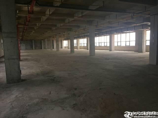 黄陂临空开发区产业园,厂房办公宿舍配套全,1280平
