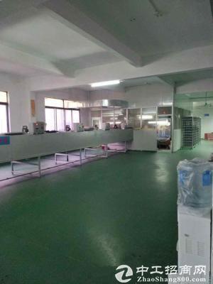 坪山石井工业区新出原房东1500平米 经典小独院厂房出租