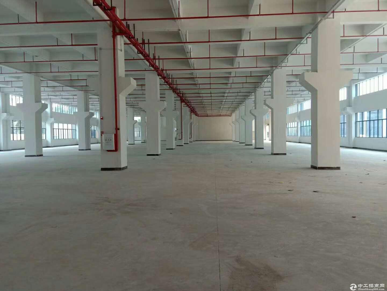 一楼700平米层高4.5米标准厂房招租 现成装修办公室