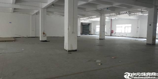 盐田港独门独院厂房26000平方出租大小可分租