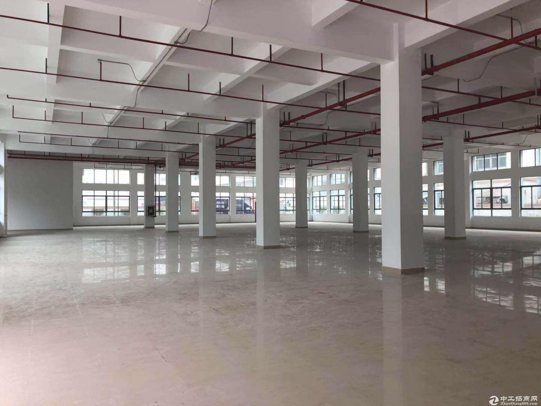 坪山坑梓 莹展工业园内3楼1450平米 现房出租