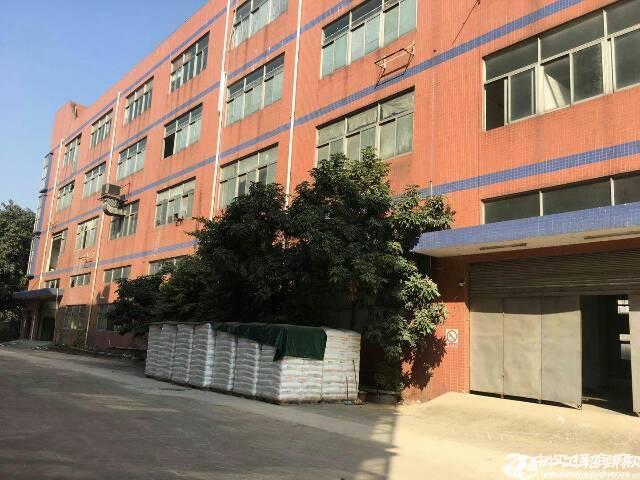 横岗独院四层9000平方重工业厂房,可以分租