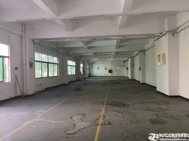 广州市番禺区新出标准厂房1000平米招租