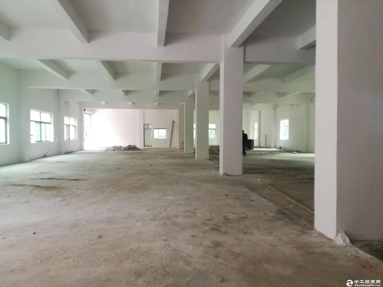 坑梓 金沙深汕路旁新出1楼厂房出租500平空地大