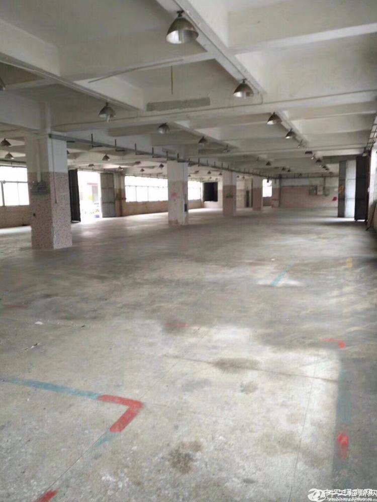 龙岗同乐厂房招租每层1650平米共四层厂房出租可分租