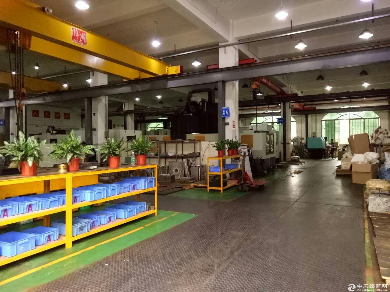 横岗(布吉)电商园140平米225平米308平米出租